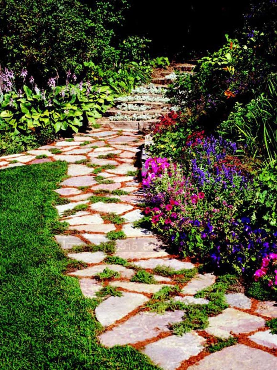 Đường dạo sân vườn trong thiết kế biệt thự